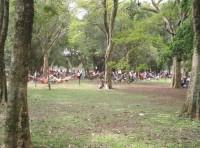 Ибирапуэра Парк, Сан-Паулу, Бразилия